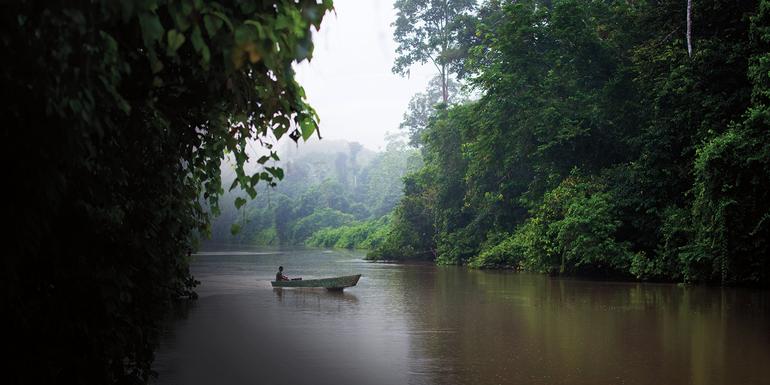 В каком направлении протекает река амазонка