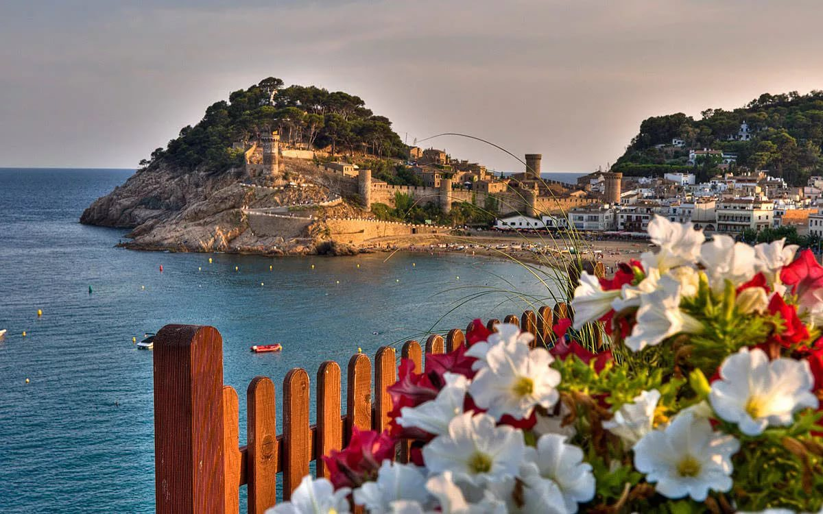 blanes18