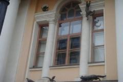1341379834_koshki_14_xoxi.ru