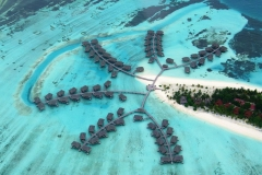 maldivy10
