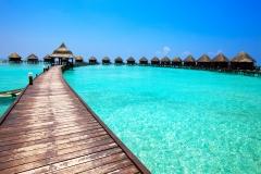 maldivy14