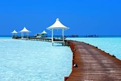 maldivy15