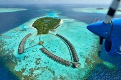 maldivy19