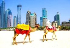 Emiratyi7680