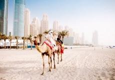 UAE10-1426x947